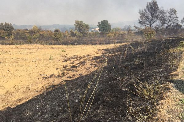 Gard - Le feu, parti de la forêt derrière Générac, est fixé depuis quelques heures - 30 juillet 2019.