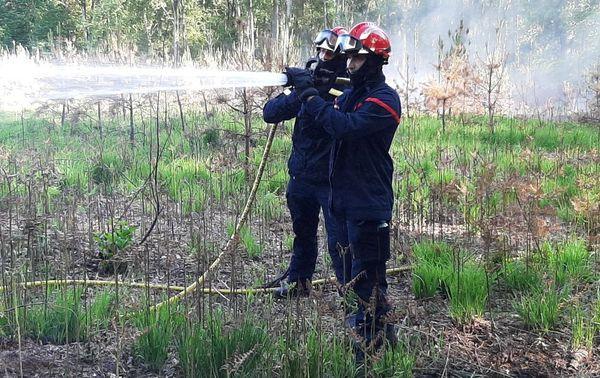 1000 m2 sont partis en fumée dans la forêt de Raismes, au nord de Valenciennes.