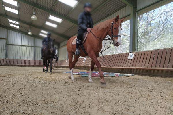 Les huit jeunes du CER Mustang de Mouzon, dans les Ardennes, montent leur cheval deux fois par semaine.
