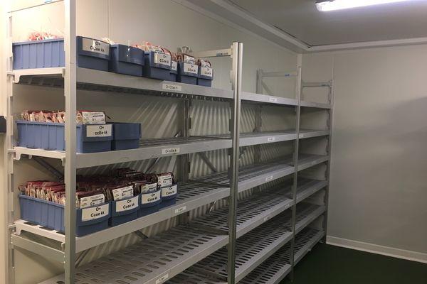 Réserve de l'Etablissement français du sang à Rennes : les étagères sont vides