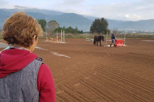 Cécile Guyot équicienne est une spécialiste de la relation d'aide par le cheval.