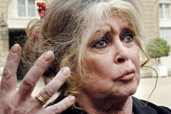 Brigitte Bardot (ici en 2007) n'a jamais abandonné son combat pour la défense des animaux.
