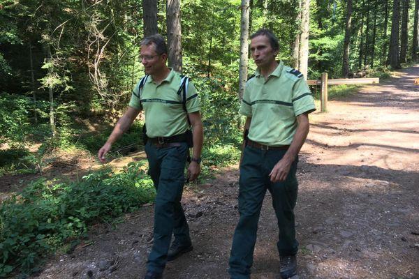 L'Office National des Forêts en patrouille de prévention contre les incendies dans les Vosges (88)