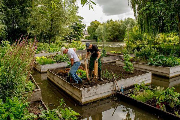 Les hortillonnages d'Amiens, ensemble de jardins flottants sur un dédale de 65 km de canaux, au cœur de la cité amiénoise