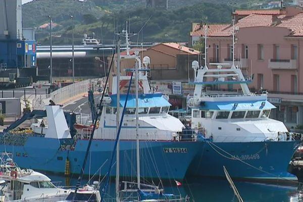 Les thoniers senneurs de notre littoral d'Occitanie se préparent pour leur départ de campagne annuelle.