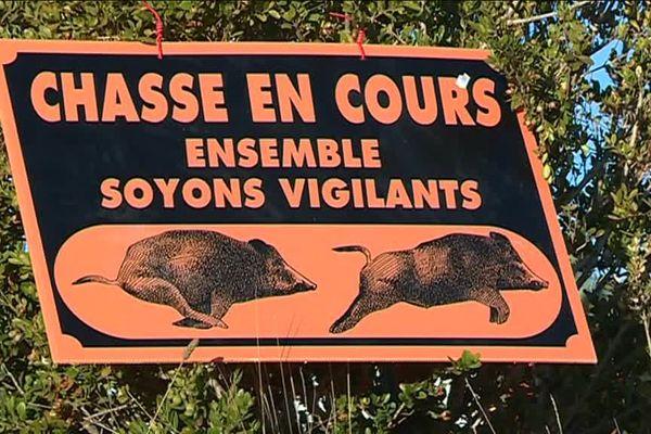 Hautes-Alpes : les chasseurs se mobilisent contre la prolifération des sangliers