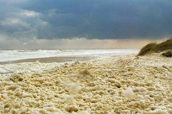 Quand le vent joue avec les vagues pour recouvrir la plage d'écume, dans la Manche