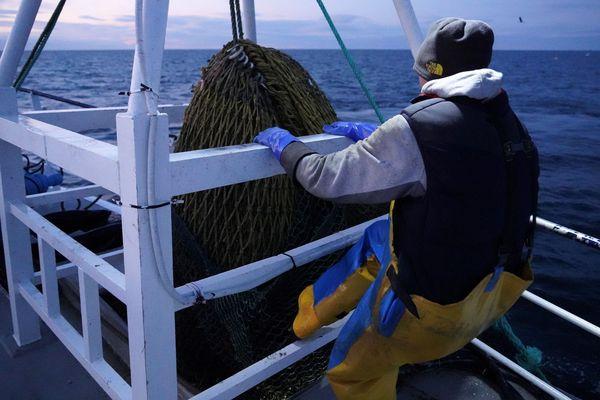 A bord du bateau de pêche The Good Fellowship, au large de North Shields en mer du Nord, le 21 janvier 2020.