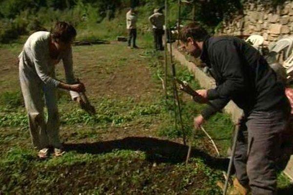 Dans les Cévennes, on cultive son jardin en groupe et on récolte bien plus que des légumes