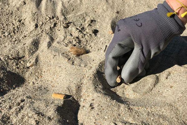 Une nouvelle opération de nettoyage de plage a eu lieu ce samedi à Palavas-les-flots. Objectif: ramasser le maximum de mégots de cigarettes et de batons de sucettes et de sensibiliser la population à l'environnement.
