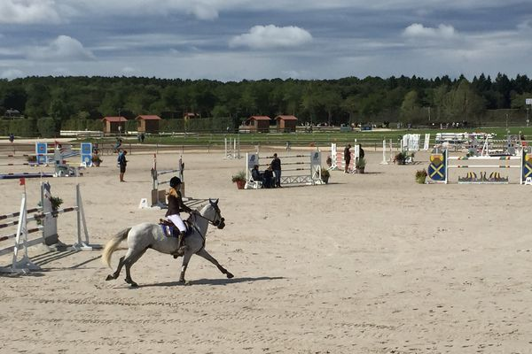 Le championnat de France de poneys à Lamotte-Beuvron, dans le Loir-et-Cher.