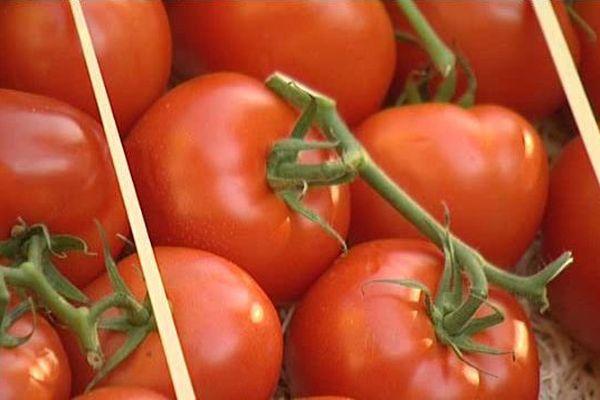 Le congrès des producteurs de légumes de France à Perpignan - 19 novembre 2015