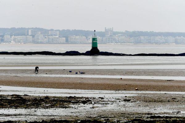 La pêche à pied de loisir interdite en Loire-Atlantique en raison du confinement
