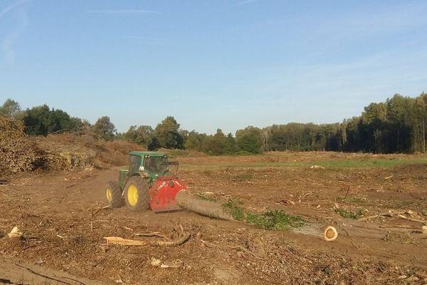 La forêt du Domaine des Sétives, rasée à Bourgoin-Jallieu pour une nouvelle zone d'activités