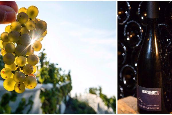 """Les premières bouteilles de """"charbonnay"""" datent de 2014."""