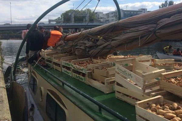 """Plus d'une tonne de pommes de terre et plusieurs centaines de kilos d'oignons sont arrivés à Nantes par bateau en provenance d'une parcelle solidaire pour ravitailler l'association d'aide aux migrants """"l'Autre cantine""""."""