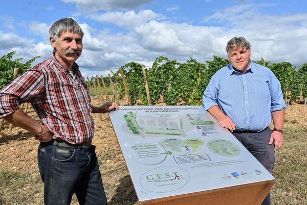 Jean-Claude Rateau (à gauche) et Thibault Liger-Belair devant le Conservatoire des anciens cépages bourguignons à Savigny-les-Beaune, en Côte-d'Or, le 5 septembre 2019.