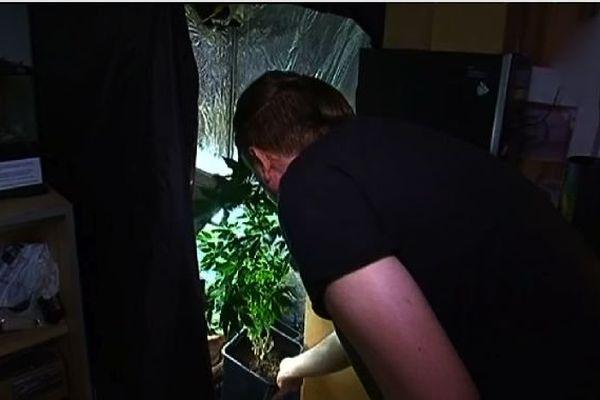 Il produit son propre cannabis à domicile.