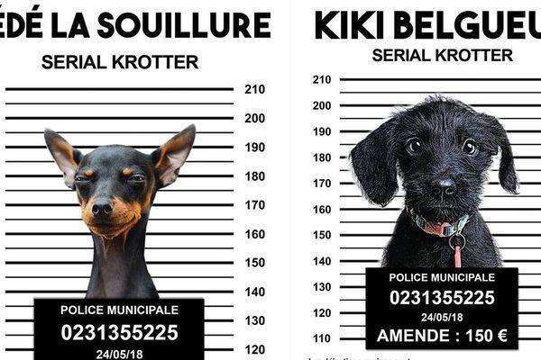 La campagne humoristique de Mondeville pour lutter contre les déjections canines sur la voie publique
