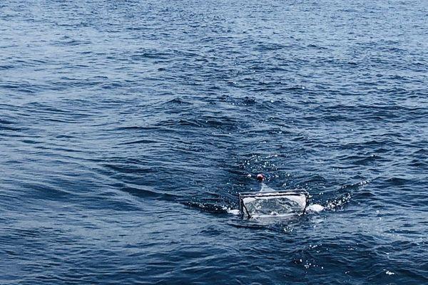 Expédition SEA Plastics. Le filet récupère, dans une sorte d'entonnoir, les déchets plastiques très petits qui flottent à la surface.
