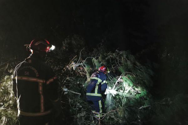 Les pompiers ont dégagé les routes de Belle-Ile toute la nuit