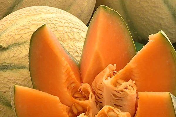 Un producteur gardois a donné entre cinq et six tonnes de melons aux Restos du coeur - 18 juillet 2017