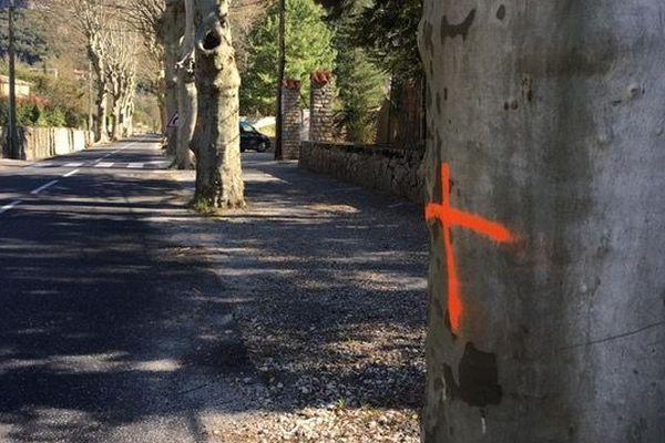 19 platanes ont à nouveau été vandalisés à Gorniès,  hameau de cinquante habitants situé dans la vallée de laVis. Des analyses sont en cours.