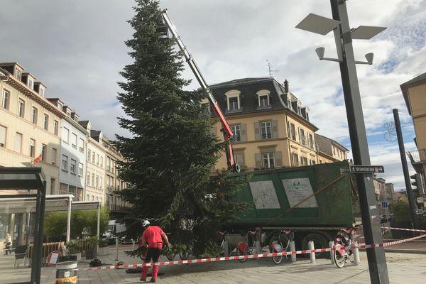 Un sapin de 8 mètres est en cours d'installation, place de la République à Mulhouse.