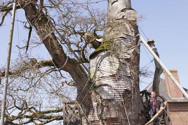 Emmanuel Maubert visite le plus vieux chêne d'Europe, situé à Yvetot