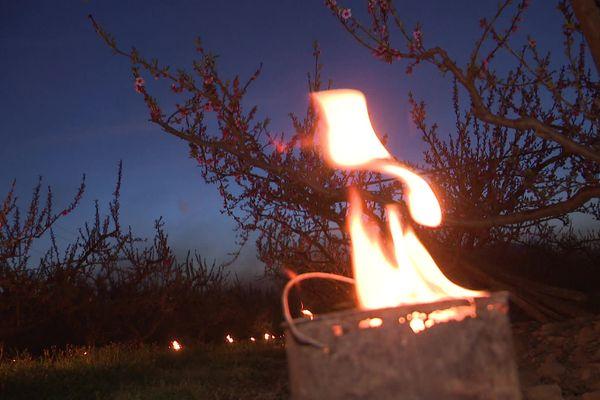 Les arboriculteurs allument de petits braseros au milieu de leur exploitation pour maintenir des températures positives - Jonquières-Saint-Vincent (Gard) - 24 mars 2021.
