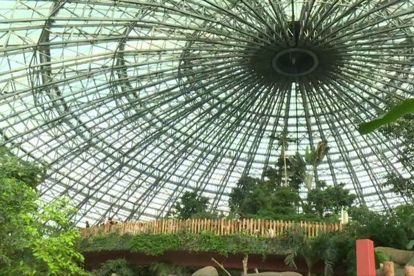 Le dôme tropical a du ZooParc de Beauval, dernier investissement ouvert le 8 février 2020, n'a plus de public.