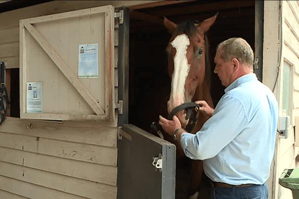 Depuis 2010, en Dordogne, Roland prend soin des chevaux blessés et retraités de la police britannique.