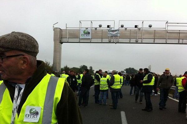 Les camions en convoi sur l'autoroute A68.