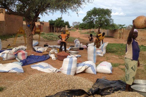 L'ACCIR au Burkina Faso
