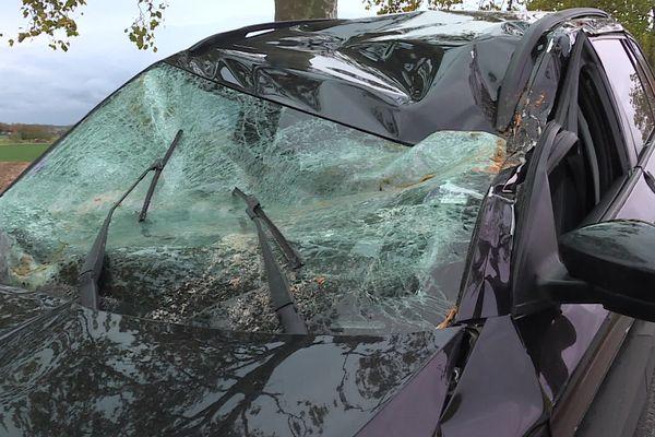 Arraye-et-Han (Meurthe et Moselle). Après le passage de la tempête Aurore, les branches d'un platane sont tombées sur une voiture.