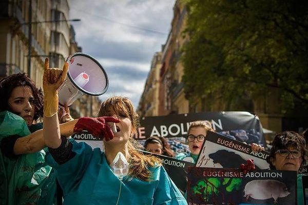 Des militants de Boucherie Abolition lors d'une action dans la rue