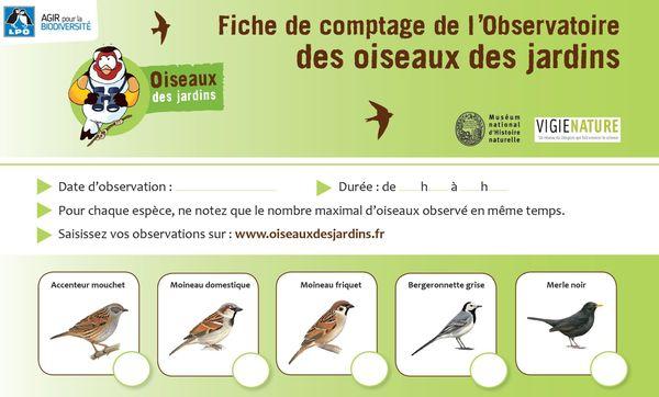 Extrait de la fiche de comptage des oiseaux dans les jardins proposée par la Ligue de protection des oiseaux.