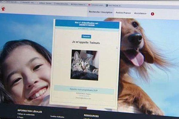 La société Vethica qui est basée à Beaune, en Côte-d'Or, domine le marché français de la puce électronique pour animaux domestiques.