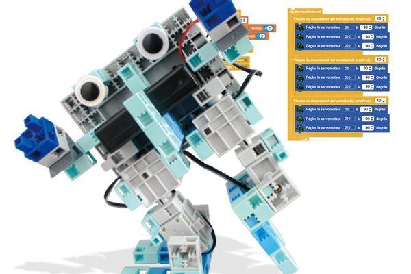 La première boutique de robot en France se trouvera à Lyon. Elle devrait ouvrir d'ici à la fin de l'année 2021