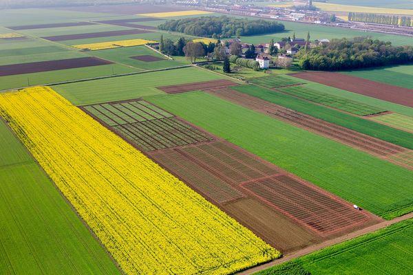 La plateforme d'expérimentation CA-SYS de l'Inrae à Bretenière (Côte-d'Or) s'étend sur 125 hectares.