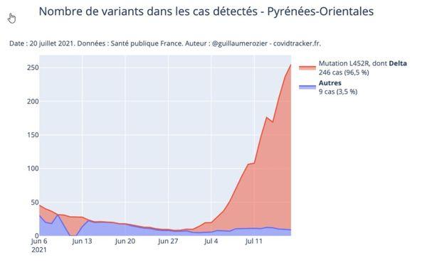 Variant Delta dans les Pyrénées-Orientales -Situation au 20 juillet 2021