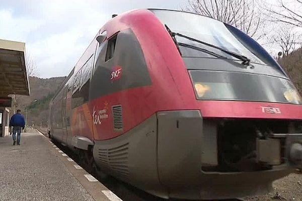 Le cévenol en Lozère - 2018.