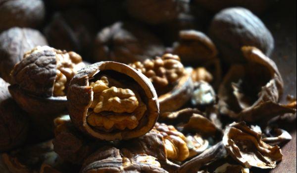 De l'huile de noix, une des productions bio de Sylvie Raynault