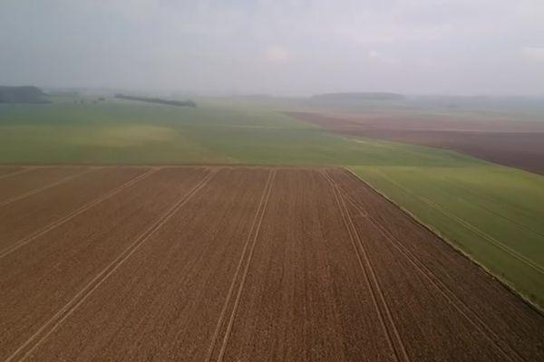 En 2018, les Hauts-de-France comptaient 1003 fermes bio
