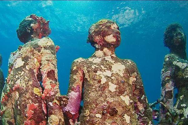 L'artiste possède un musée sous-marin à Molinere Bay, dans les petites Antilles.
