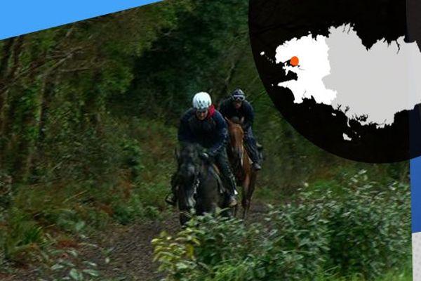 Vincent Le Roy entraîne des chevaux de course à Plougastel-Daoulas