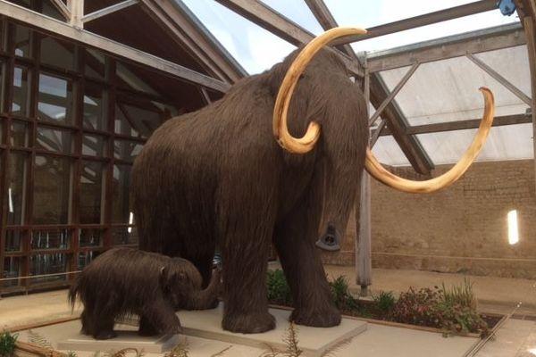 Reconstitution d'un mammouth adulte et de son petit