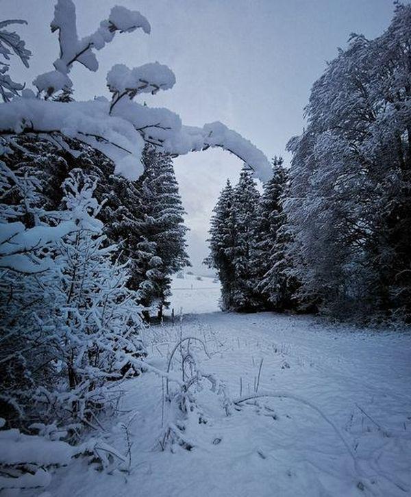 A Morbier, dans le Haut-Jura