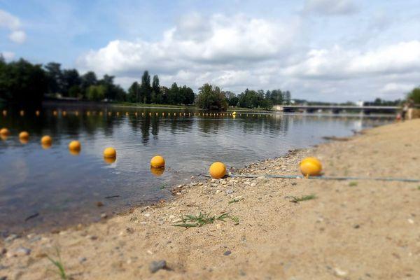 La fréquentation de la plage des Célestins a baissé de 90 % en juillet