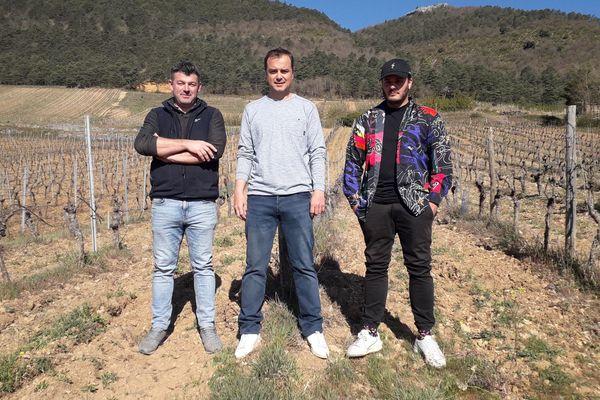Les trois associés à l'origine de la production et commercialisation d'un alcool à base de vin et de CBD.